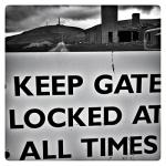 gate-trim-1